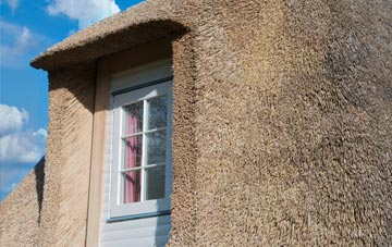 Norseman thatch roof disadvantages